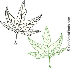 Vector hand-drawn silhouette of a maple leaf