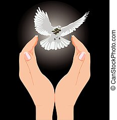 vector hand drawn to the dove with an olive branch.eps