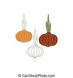 Vector hand drawn vegetables, onion. Healthy nutrition, vegetarians, vegans.