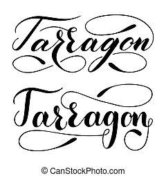 Vector hand written tarragon text isolated on white ...