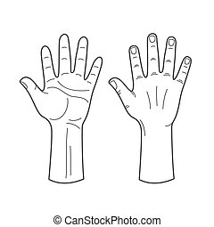 Vector hands illustration in black and white