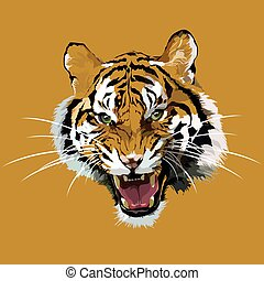 Vector head of a tiger.