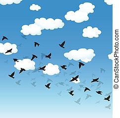 vector, hemel het vliegen, wolken, vogels