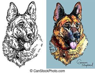 vector, herdershond, duitser, black , witte , kleur