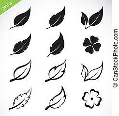 vector, hojas, icono, conjunto
