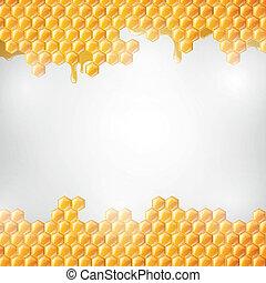 Vector Honeycombs - Vector Illustration of a Natural...