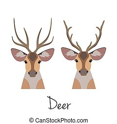 Vector horned deer head set. Flat, cartoon style object