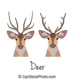Vector horned deer head set. Flat, cartoon style object
