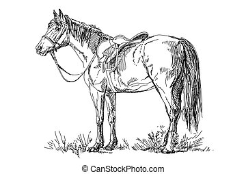 Vector Horse with saddle and bridle