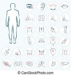 body pain, - vector human anatomy, body pain, medical ...