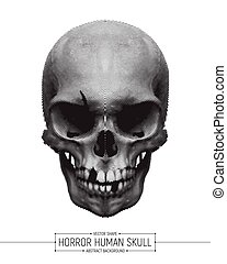 Vector Human Horror Skull Art Illustration Isolated on White...