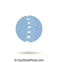 Vector human spine illustration