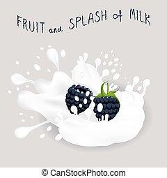 blackberry - Vector icon illustration logo for black berry...