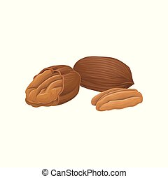 Vector icon of whole and opened pecan nuts. Organic and...