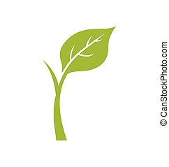 vector, icon., planta, naturaleza, ecología, gráfico, hoja ...