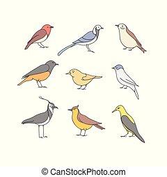 Vector icon set of bird