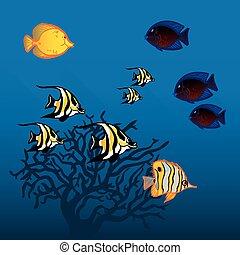 vector, icono, conjunto, con, pez