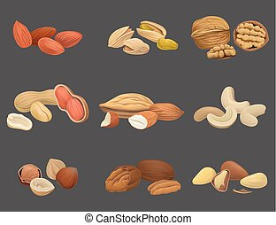 Vector icons set with various kinds of nuts walnut, pistachio, brazil, almond, peanut, cashew, hazelnut and pecan. Organic and healthy food. Tasty snack. Vegan food