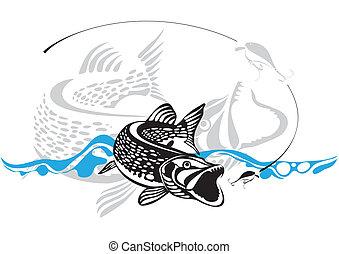 vector, illustra, visserij, snoek, lokken