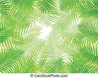 Palm leaf background - Vector Illustrati9on Of Palm leaf ...