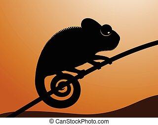 vector, illustratie, chameleon.