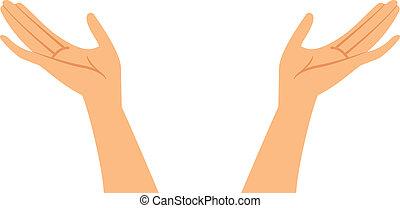 vector, illustratie, handen
