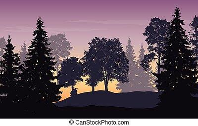vector, illustratie, van, berg landschap, met, bos, en, bomen, onder, purpere hemel, op, zonopkomst