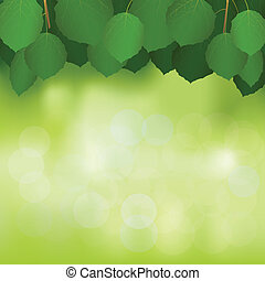 Vector illustration birch branchs on an unsharp background of nature