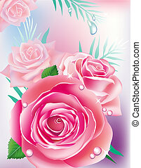 Vector illustration - card with pink roses