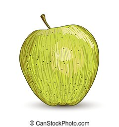 Vector illustration digital painting of apple