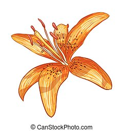 Vector illustration digital painting of flower - Vector...