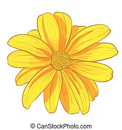 Vector illustration digital painting of flower