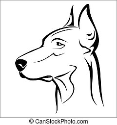 Doberman - Vector illustration : Doberman on a white...