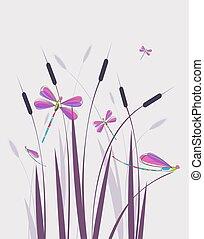 Vector illustration dragonfly