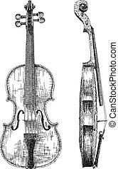 Vector illustration drawing of violin.
