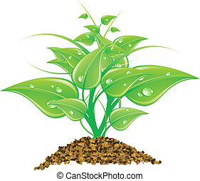 Vector illustration environmental concept - green leaves, macro, isolated on white