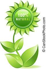 Vector illustration - Environmet friendly label, fresh and...