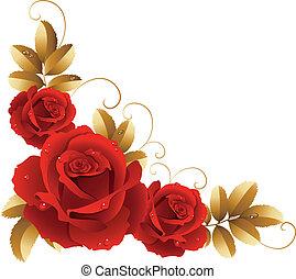 Vector illustration - fine blossoming roses