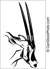 Gemsbok antelope - Vector illustration : Gemsbok antelope on...