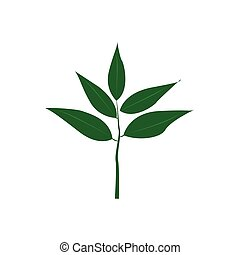 Green leaves isolated on white background. Flat style