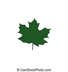 Green maple leaves isolated on white background. Flat style
