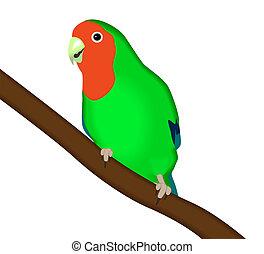 green parrot Lovebird - Vector illustration green parrot...