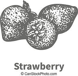 Vector illustration hand-drawn strawberry
