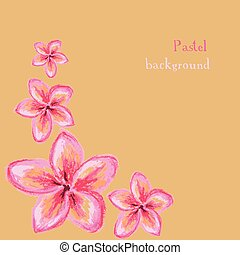 handmade drawing pastel chalks frangipani flower background