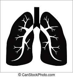 Vector illustration - Human lung on a white background.