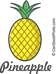 vector illustration icon pineapple flat design color full