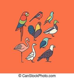 Vector illustration icon set of bird