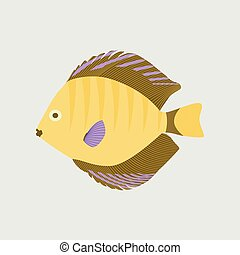 Vector illustration in flat style discus fish