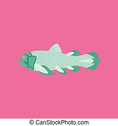 Vector illustration in flat style fish Coelacanth