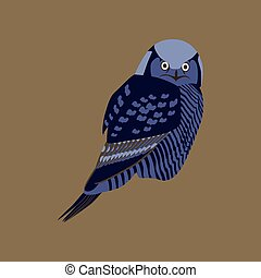 Vector illustration in flat style of owl